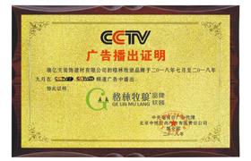 CCTV 广告播出证书