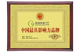 中国具影响力品牌证书